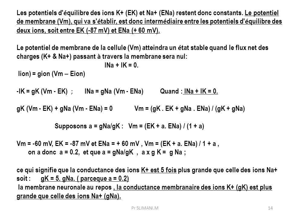 -IK = gK (Vm - EK) ; INa = gNa (Vm - ENa) Quand : INa + IK = 0.