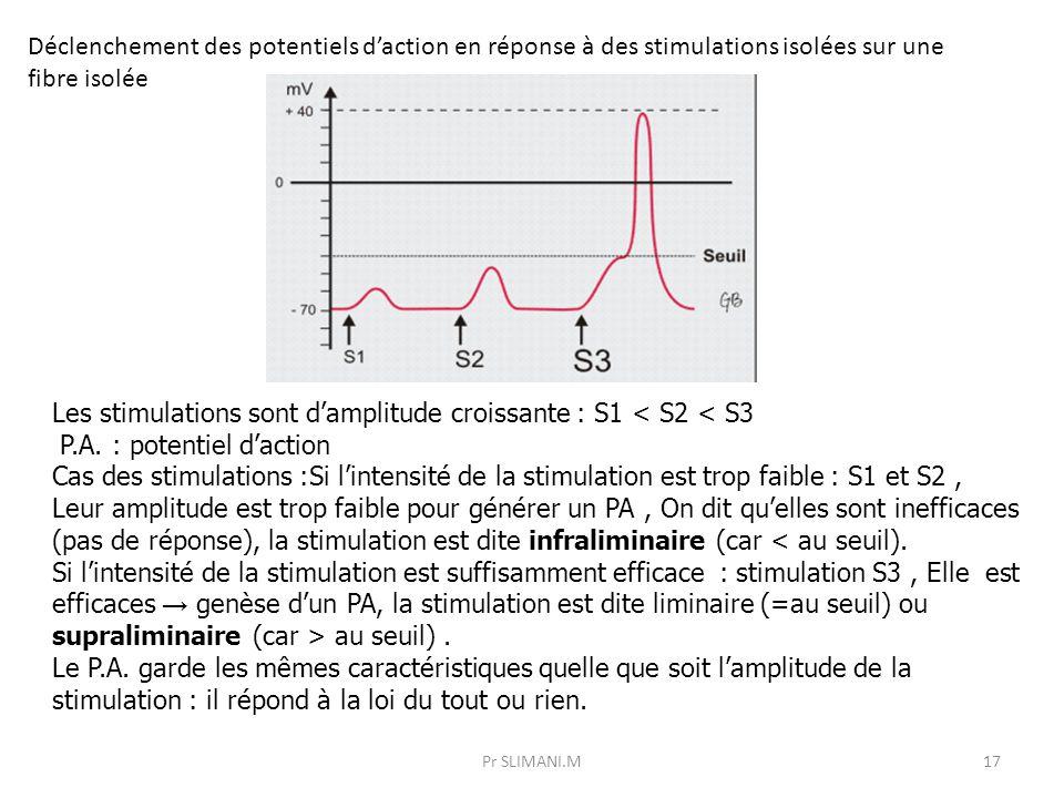 Les stimulations sont d'amplitude croissante : S1 < S2 < S3