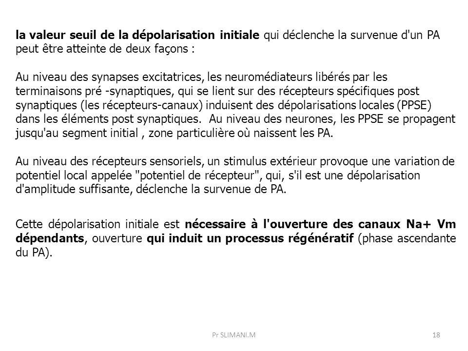 la valeur seuil de la dépolarisation initiale qui déclenche la survenue d un PA peut être atteinte de deux façons :