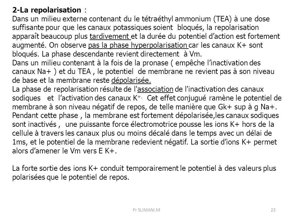 2-La repolarisation :