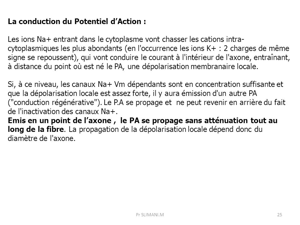 La conduction du Potentiel d'Action :