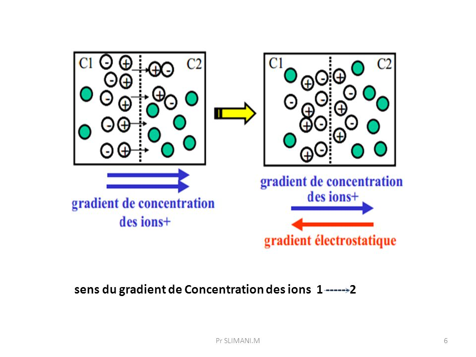 sens du gradient de Concentration des ions 1 ------2