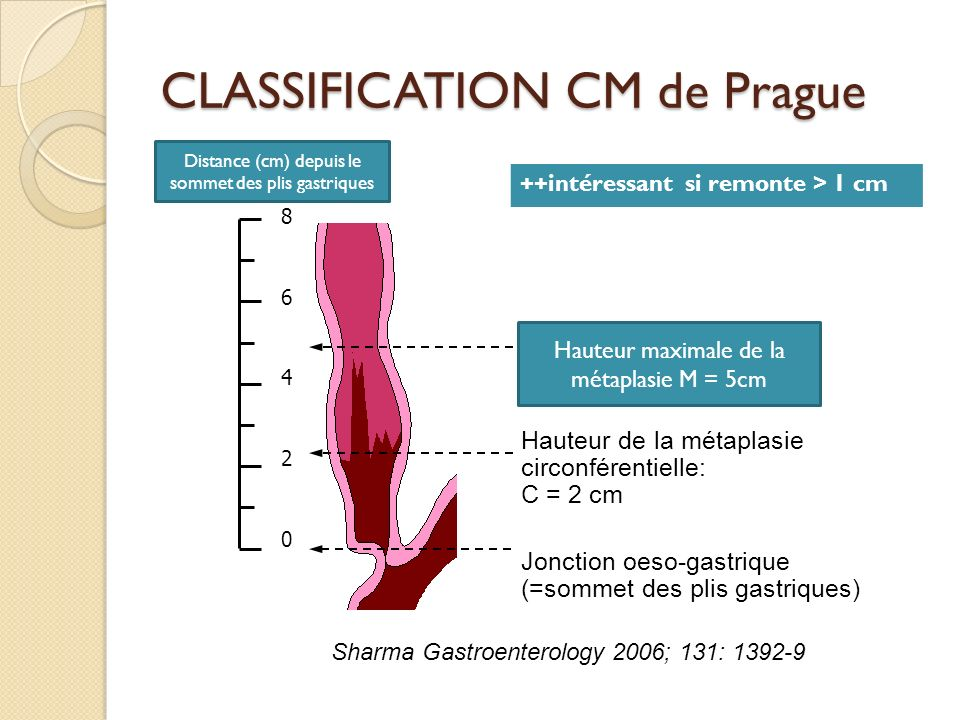 CLASSIFICATION CM de Prague