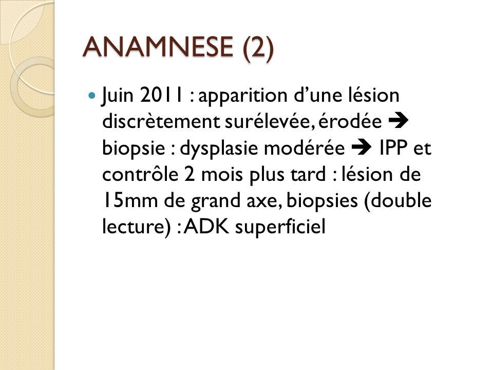 ANAMNESE (2)