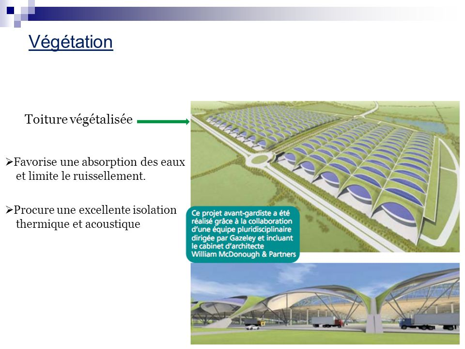 Végétation Toiture végétalisée Favorise une absorption des eaux