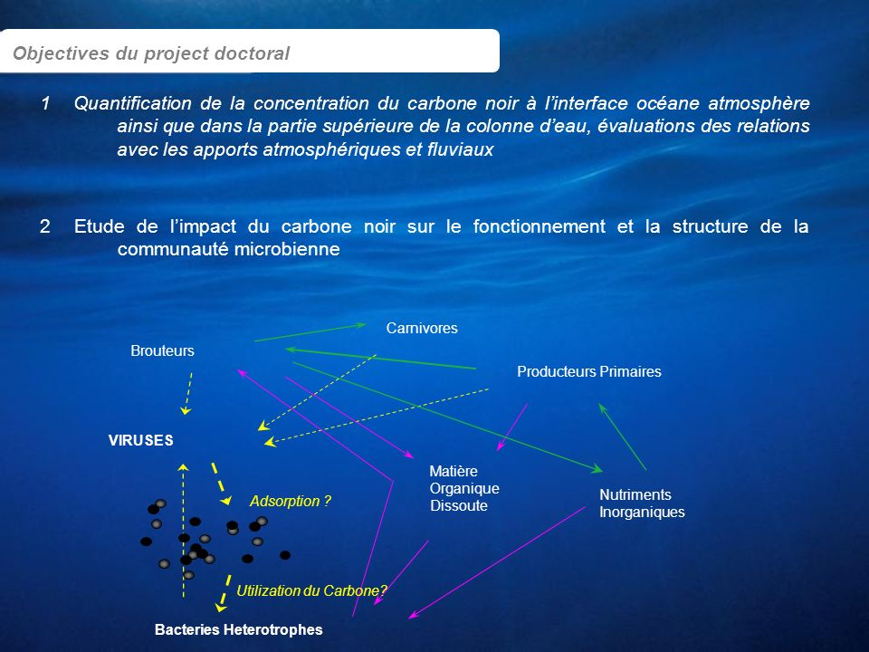Objectives du project doctoral