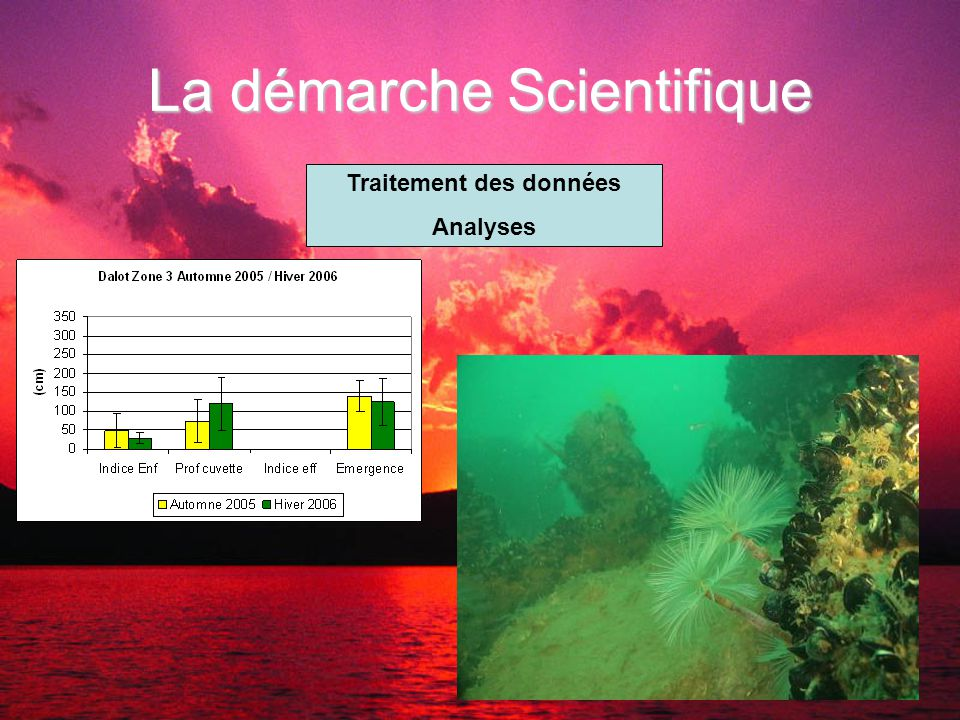 La démarche Scientifique