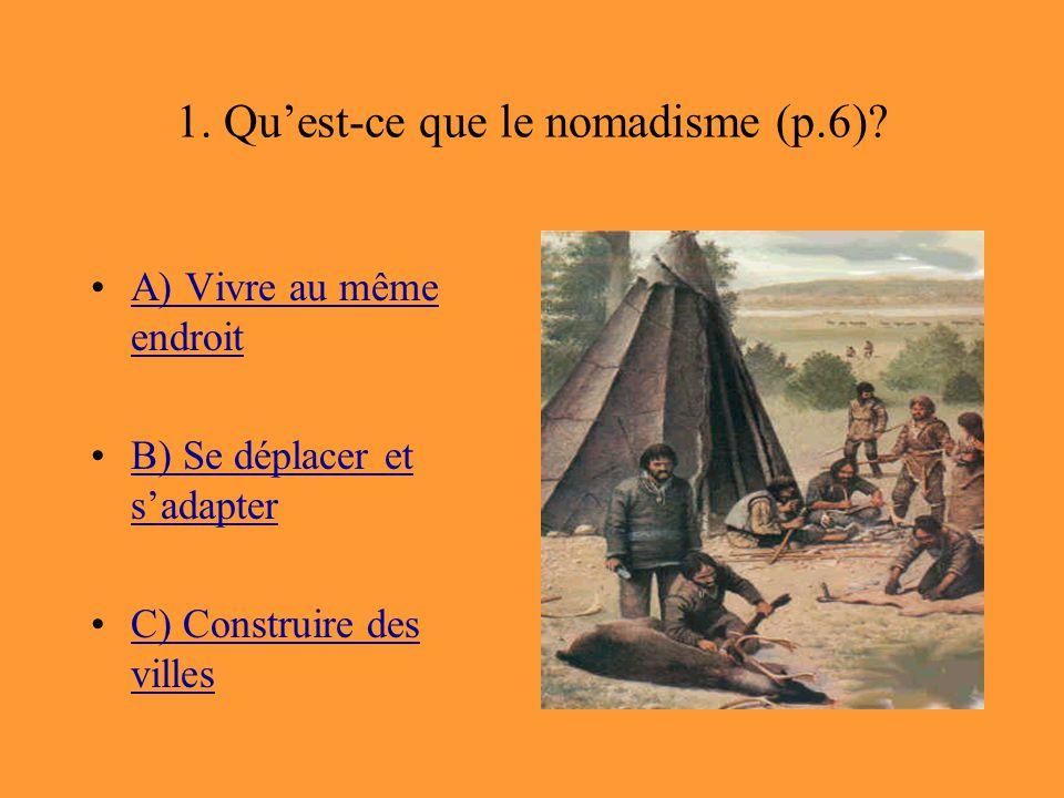 1. Qu'est-ce que le nomadisme (p.6)