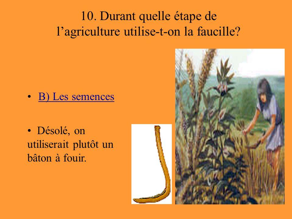 10. Durant quelle étape de l'agriculture utilise-t-on la faucille
