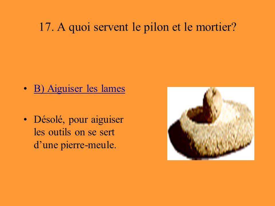 17. A quoi servent le pilon et le mortier