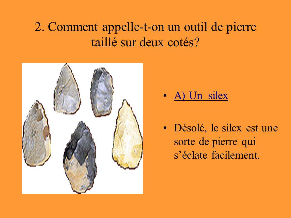 2. Comment appelle-t-on un outil de pierre taillé sur deux cotés