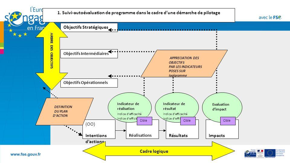 1. Suivi-autoévaluation de programme dans le cadre d'une démarche de pilotage