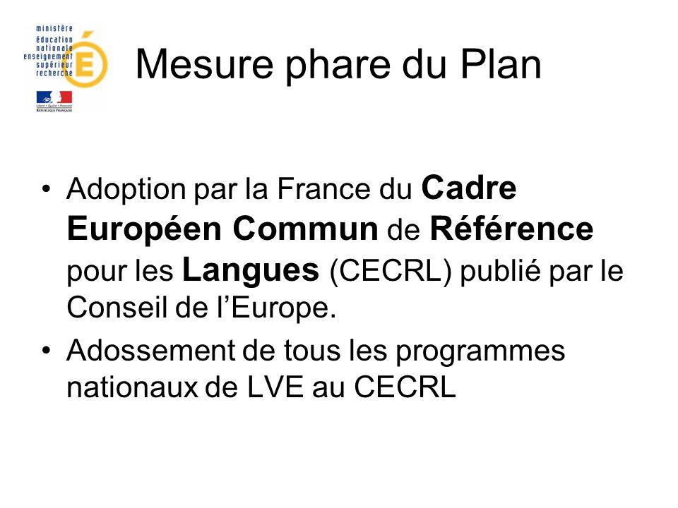 Mesure phare du Plan Adoption par la France du Cadre Européen Commun de Référence pour les Langues (CECRL) publié par le Conseil de l'Europe.