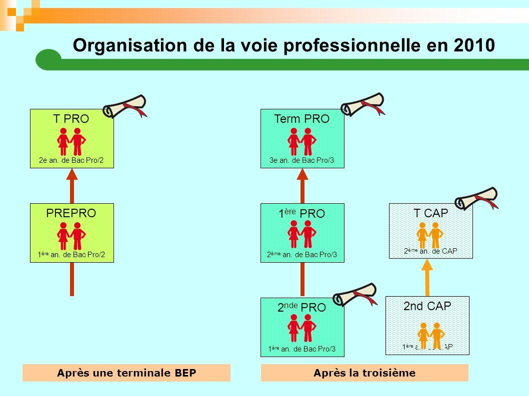 Organisation de la voie professionnelle en 2010