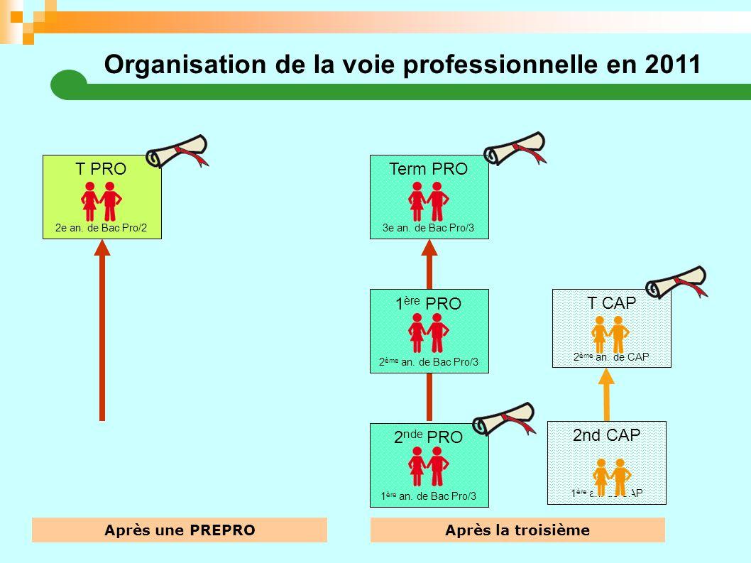 Organisation de la voie professionnelle en 2011