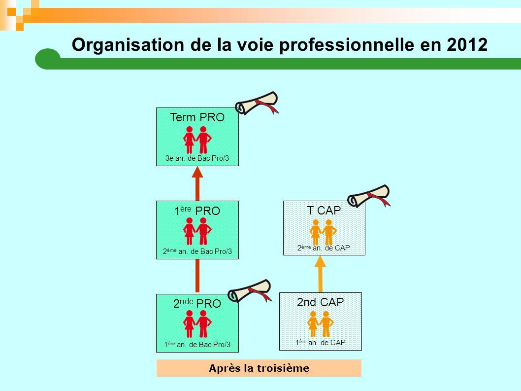 Organisation de la voie professionnelle en 2012