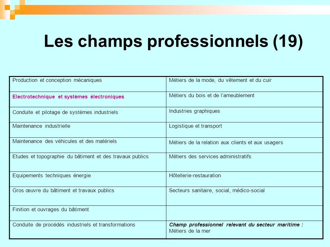 Les champs professionnels (19)