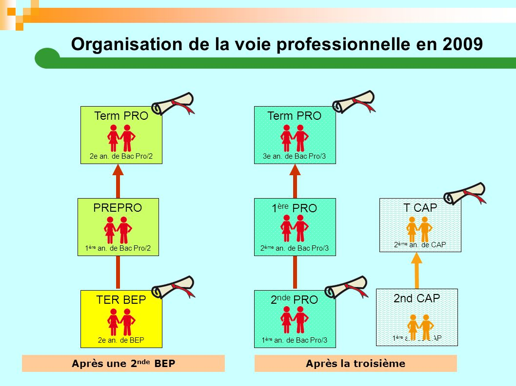 Organisation de la voie professionnelle en 2009