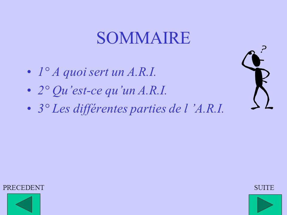 SOMMAIRE 1° A quoi sert un A.R.I. 2° Qu'est-ce qu'un A.R.I.