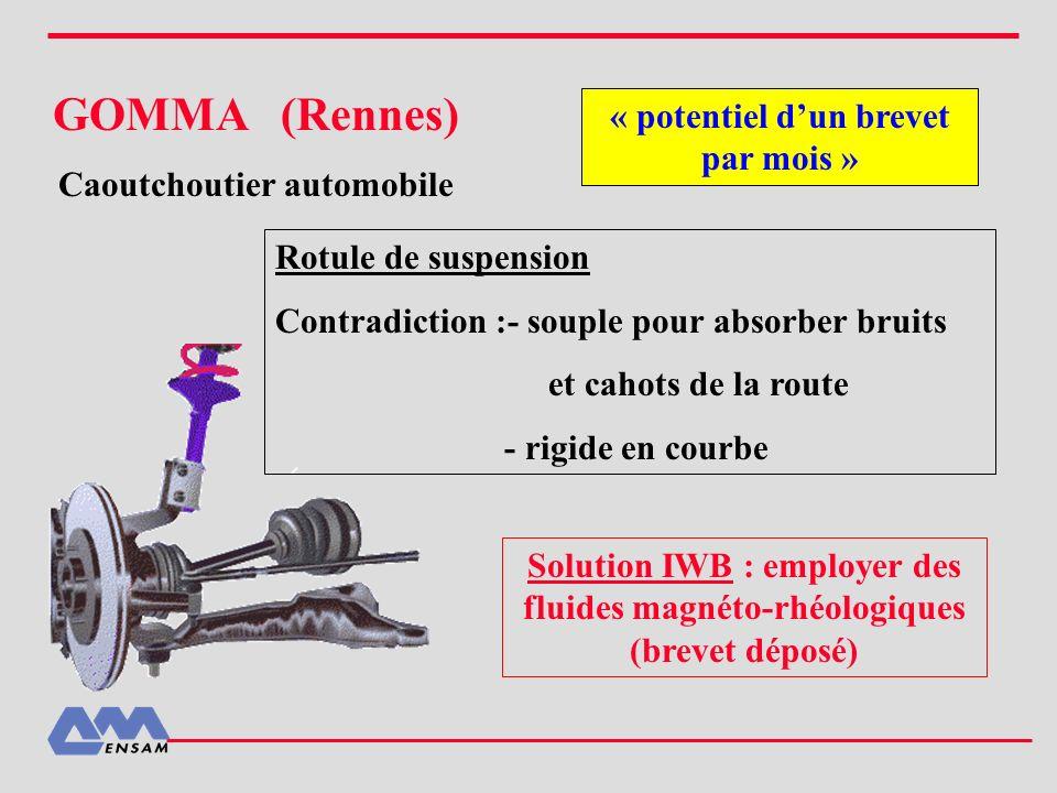 Caoutchoutier automobile « potentiel d'un brevet par mois »