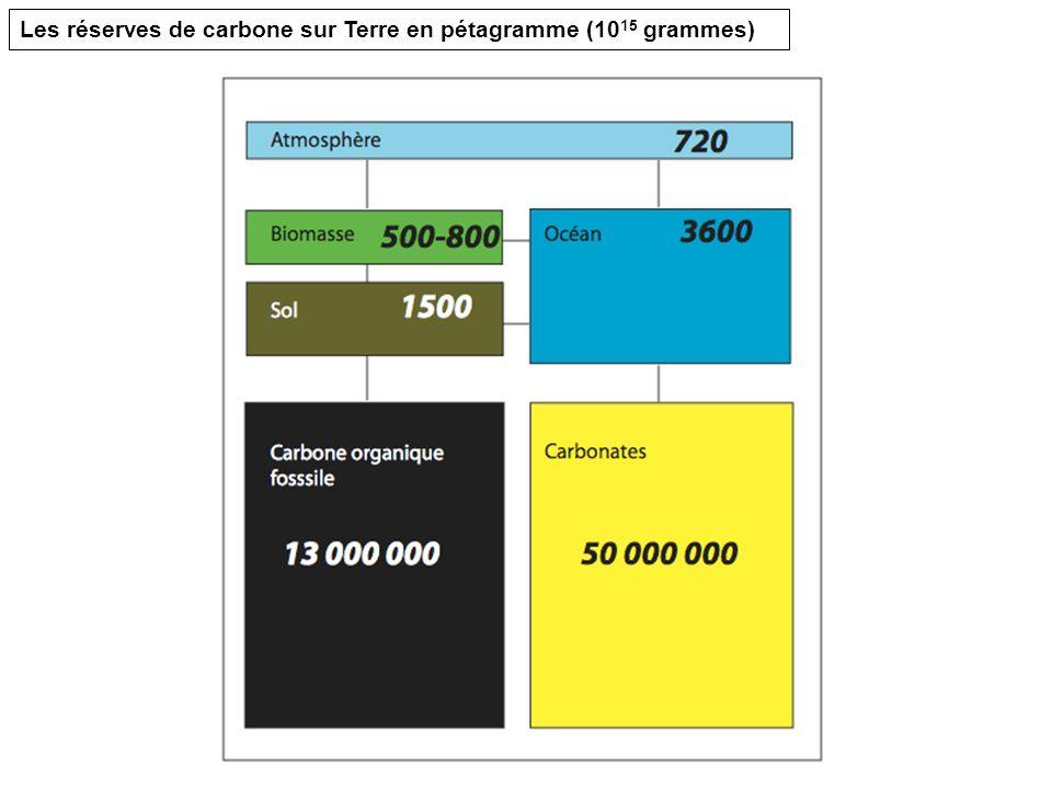 Les réserves de carbone sur Terre en pétagramme (1015 grammes)