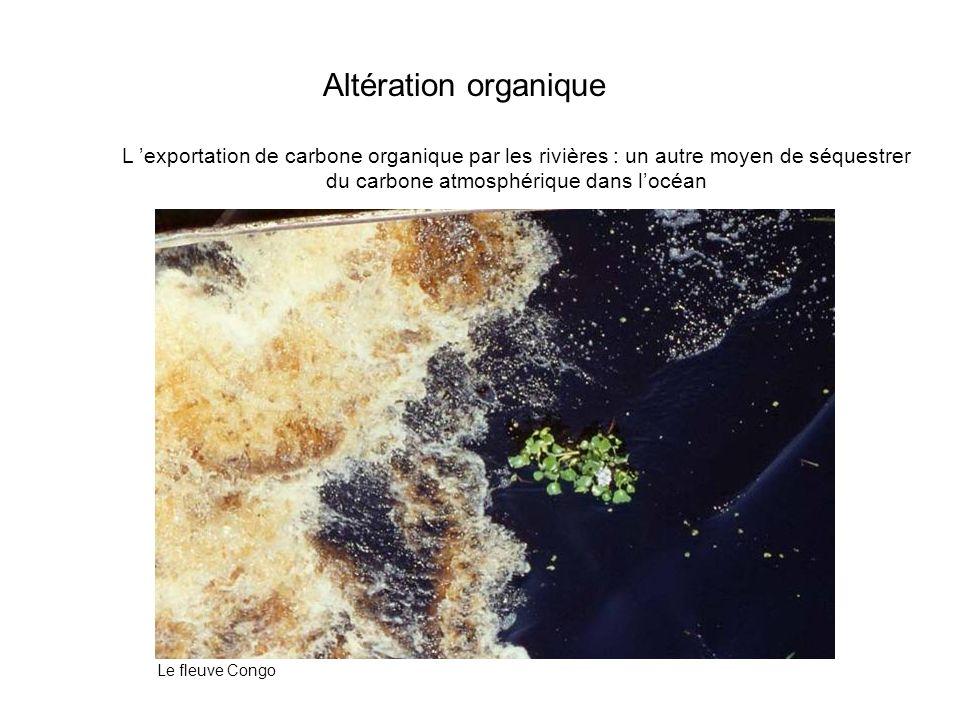 Altération organiqueL 'exportation de carbone organique par les rivières : un autre moyen de séquestrer du carbone atmosphérique dans l'océan.