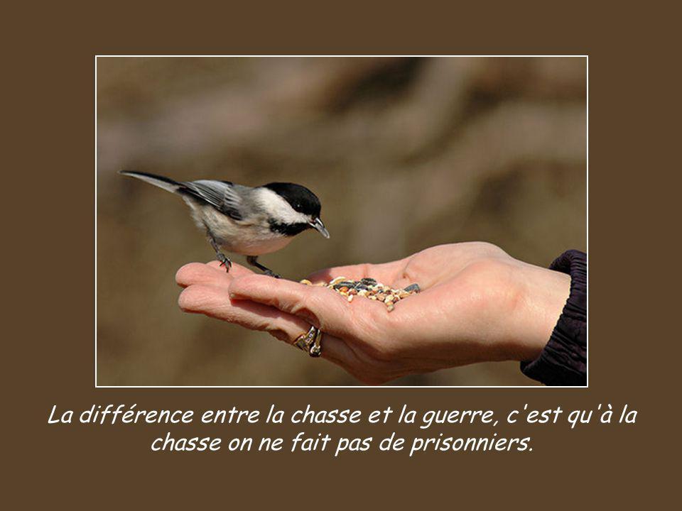 La différence entre la chasse et la guerre, c est qu à la chasse on ne fait pas de prisonniers.