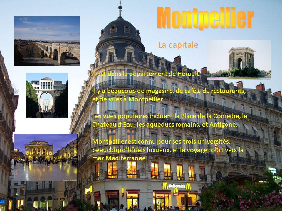 Montpellier La capitale Il est dans la département de Herault.