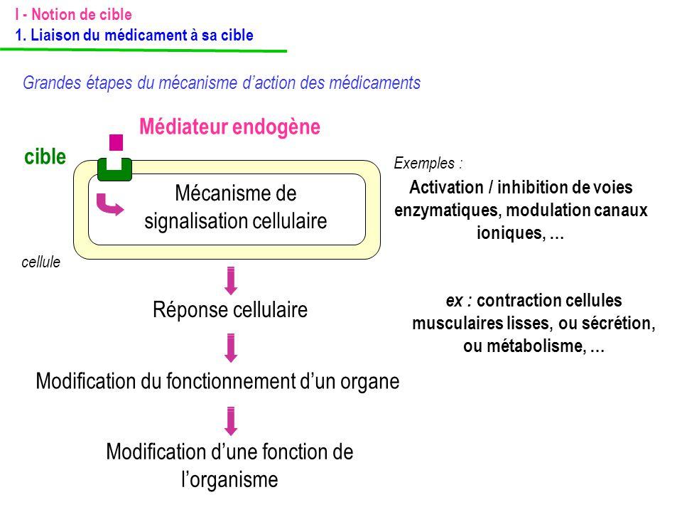 Mécanisme de signalisation cellulaire