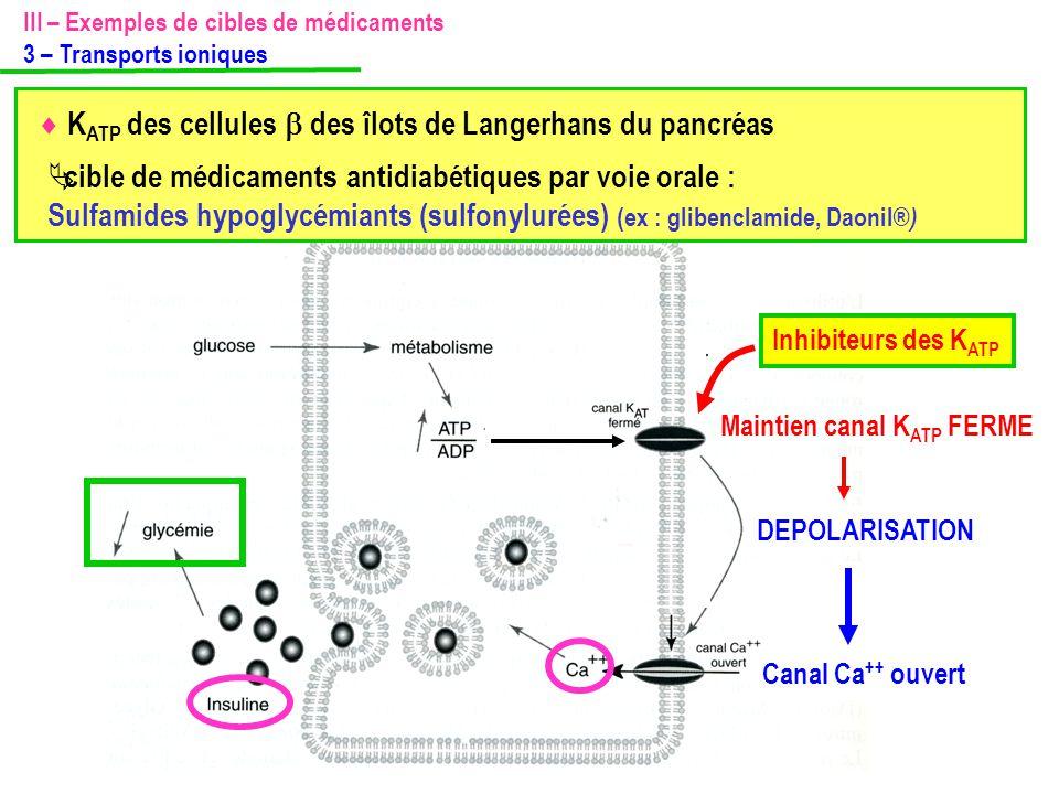 cible de médicaments antidiabétiques par voie orale :