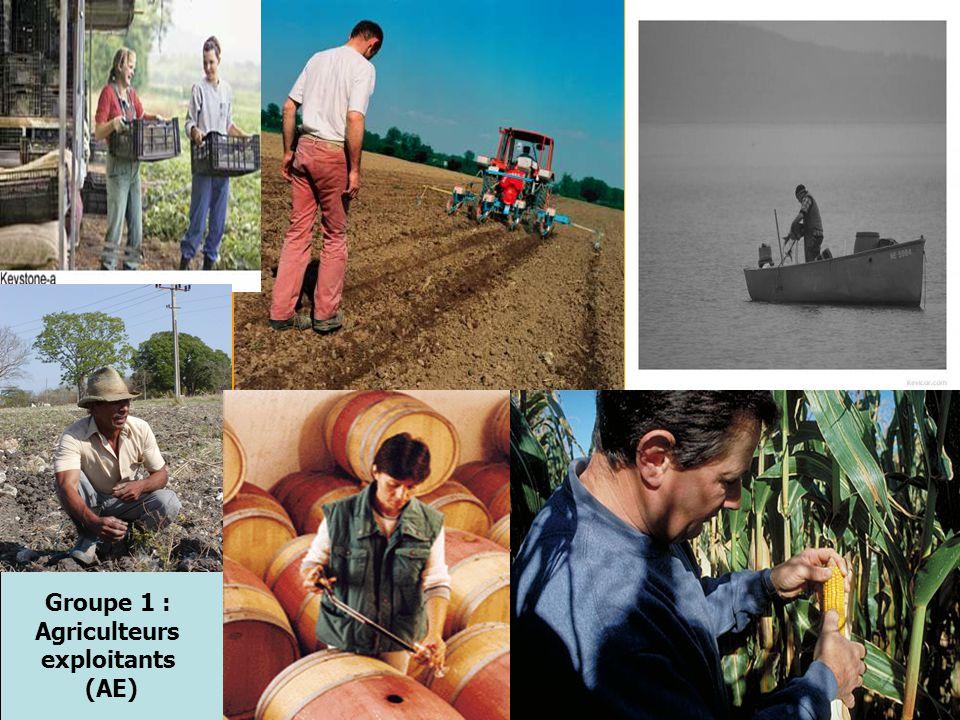 Groupe 1 : Agriculteurs exploitants (AE)