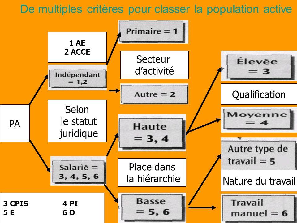 De multiples critères pour classer la population active