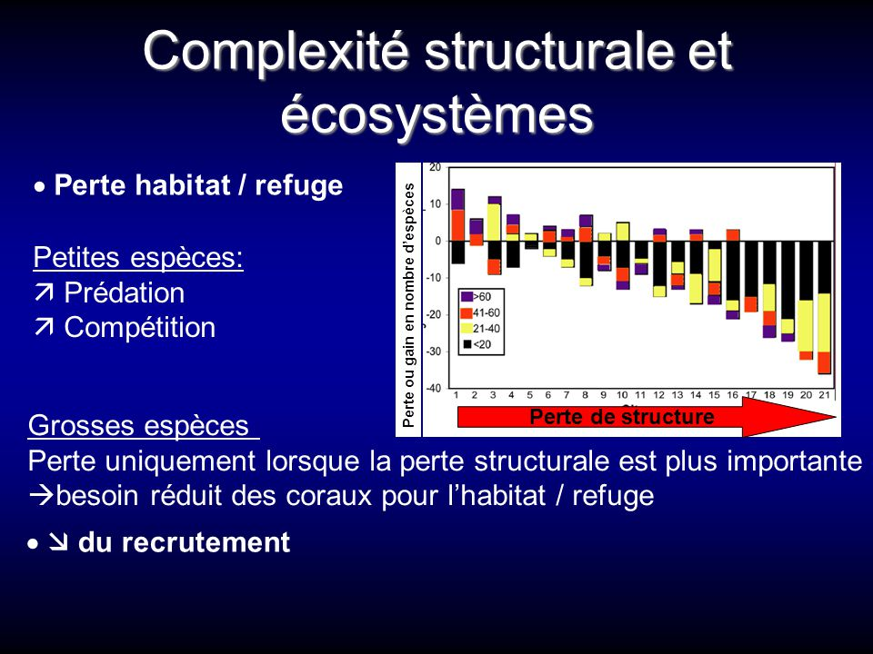 Complexité structurale et écosystèmes