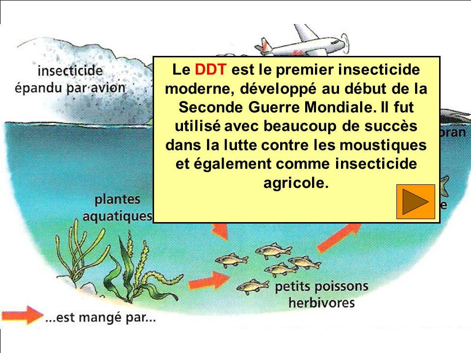 Le DDT est le premier insecticide moderne, développé au début de la Seconde Guerre Mondiale.
