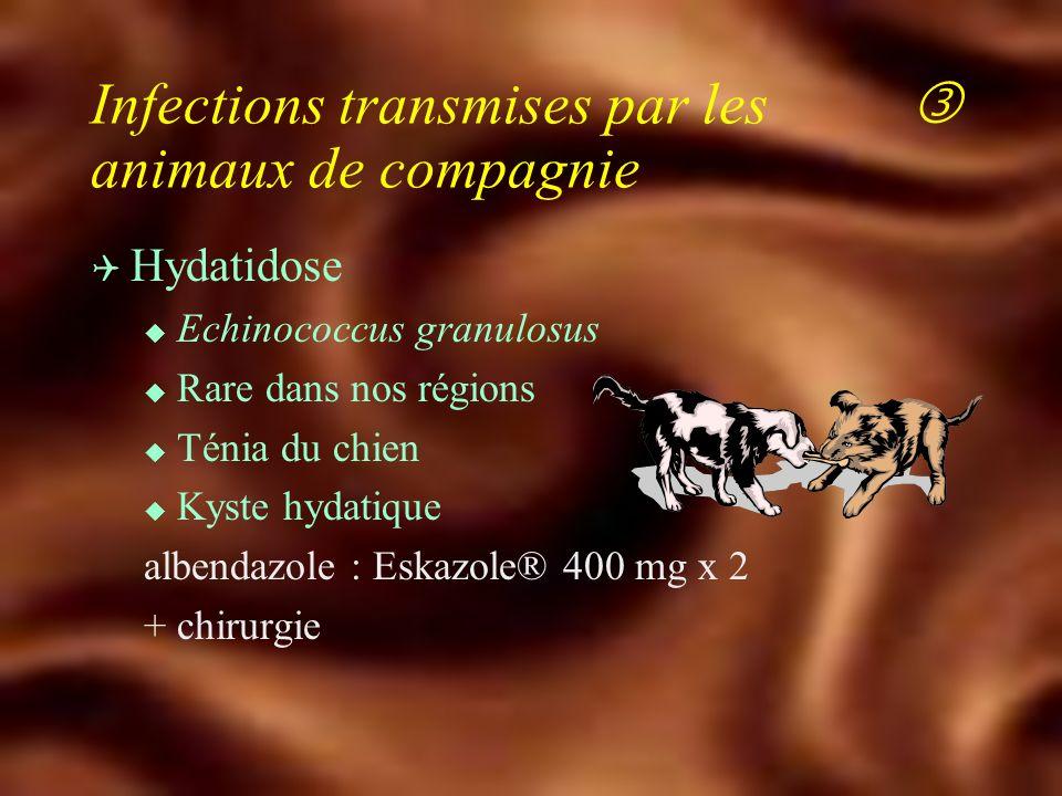 Infections transmises par les  animaux de compagnie