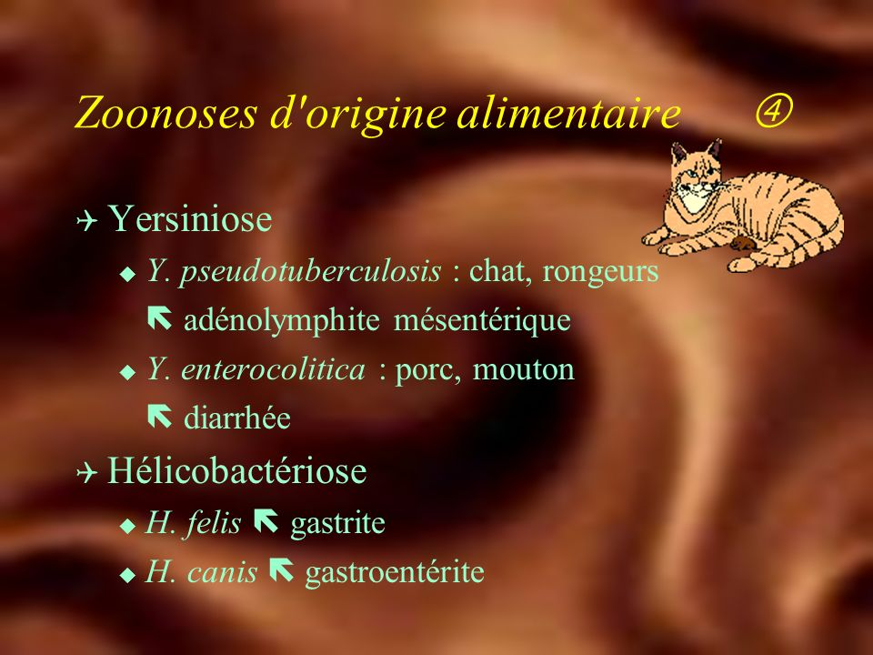 Zoonoses d origine alimentaire 