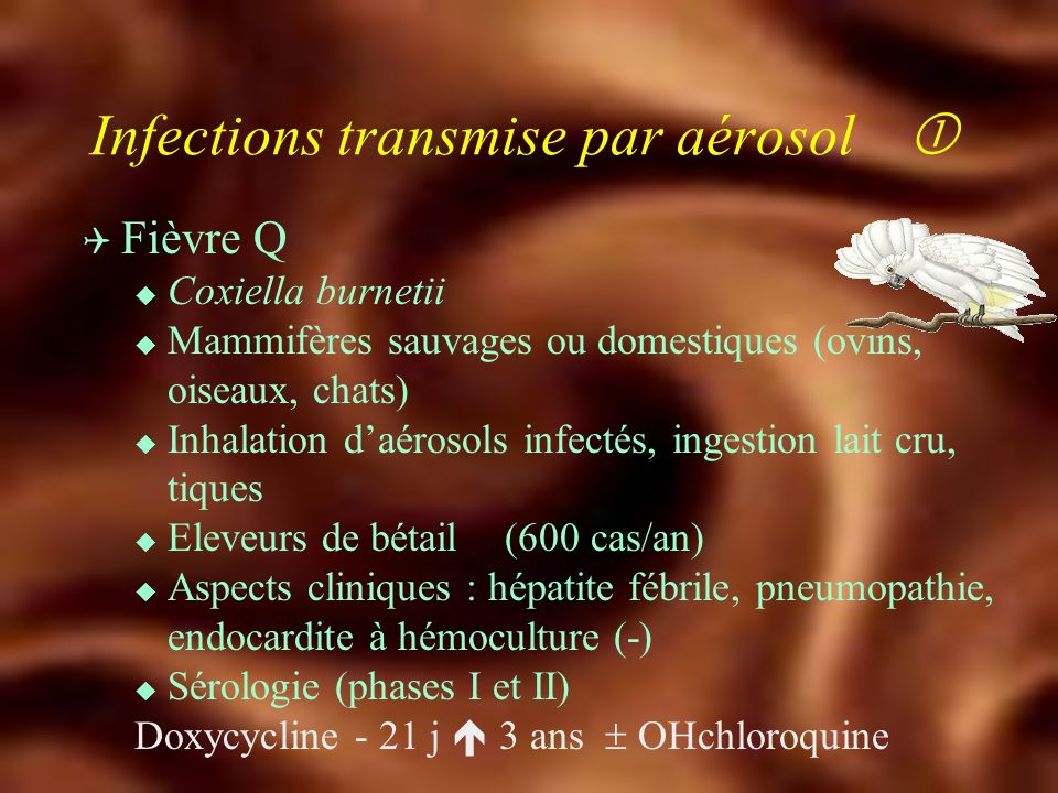 Infections transmise par aérosol 