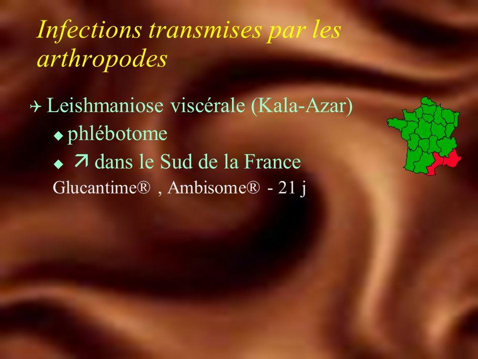 Infections transmises par les arthropodes