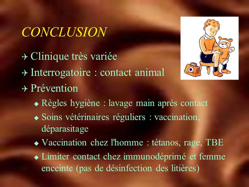CONCLUSION Clinique très variée Interrogatoire : contact animal