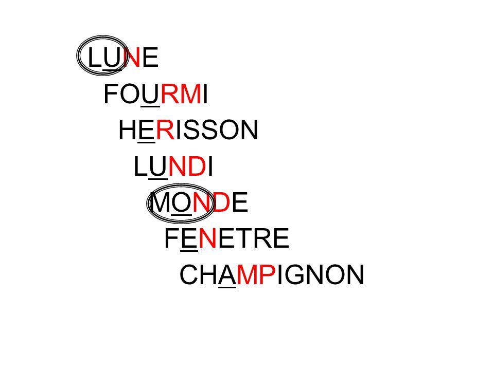 LUNE FOURMI HERISSON LUNDI MONDE FENETRE CHAMPIGNON