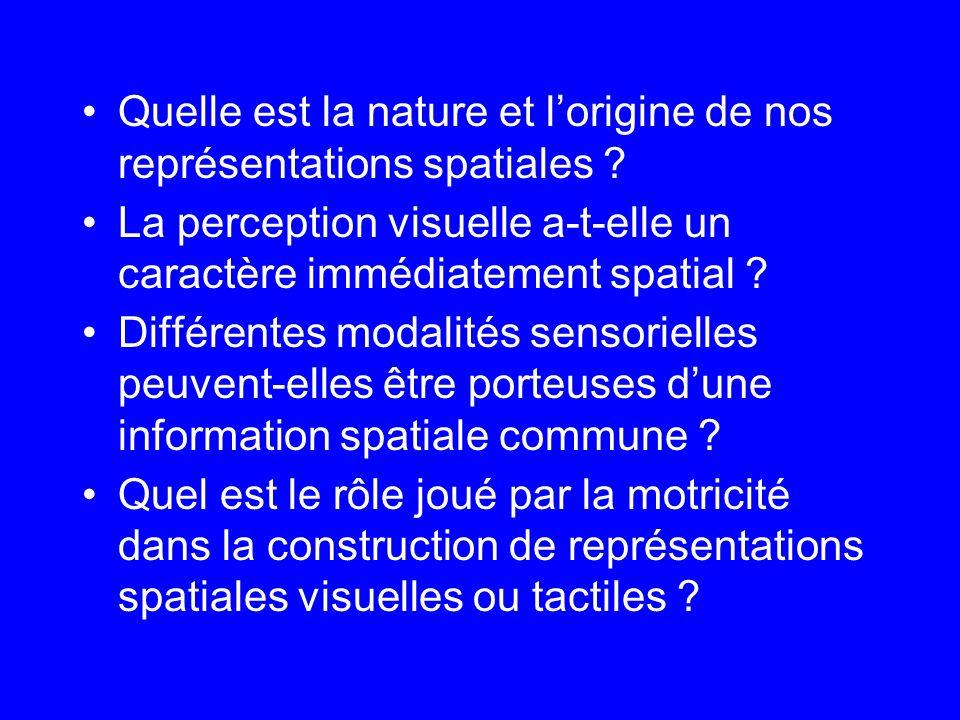 Quelle est la nature et l'origine de nos représentations spatiales