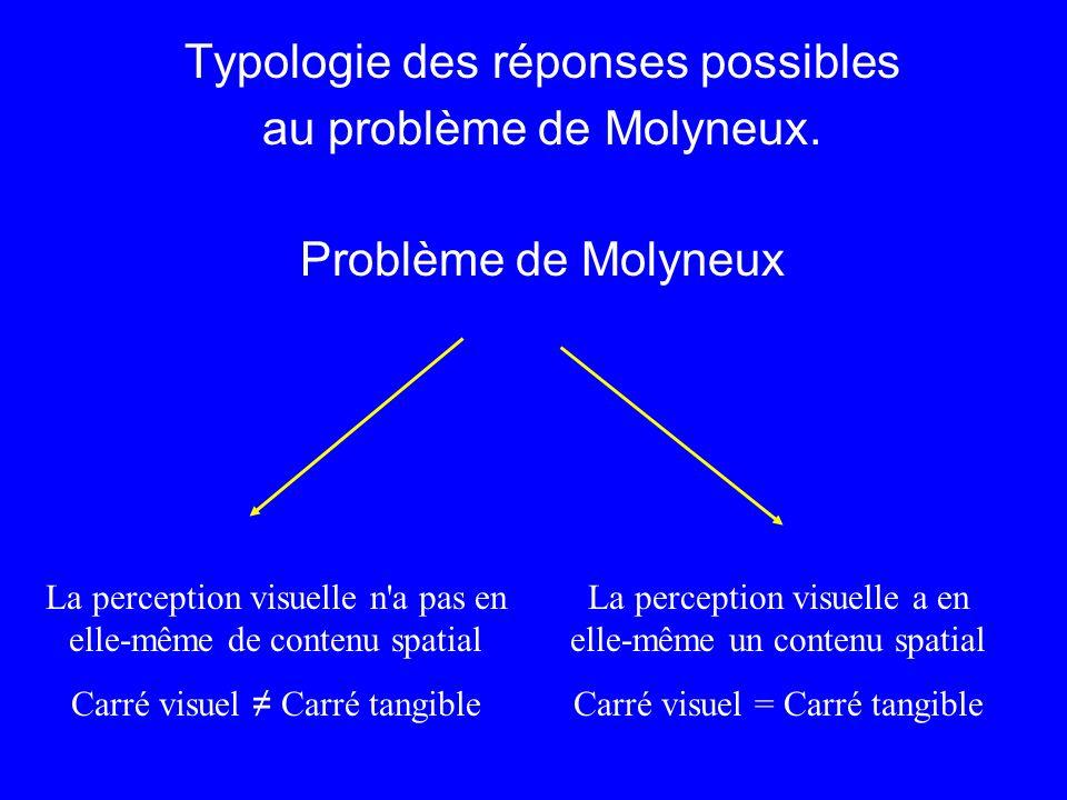 Typologie des réponses possibles au problème de Molyneux.