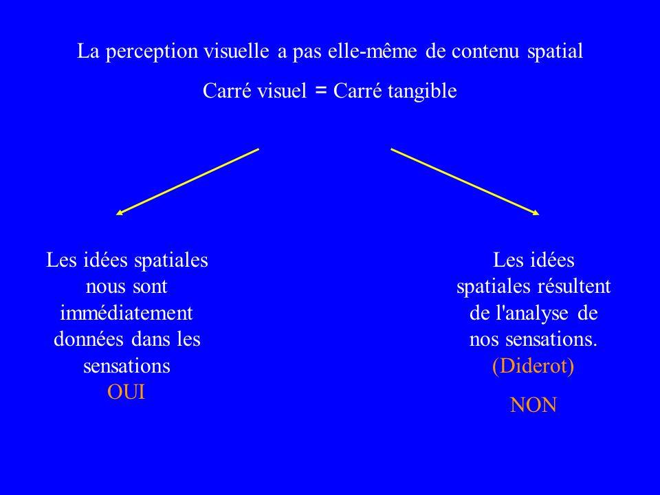 La perception visuelle a pas elle-même de contenu spatial