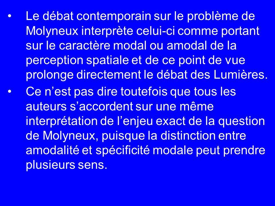 Le débat contemporain sur le problème de Molyneux interprète celui-ci comme portant sur le caractère modal ou amodal de la perception spatiale et de ce point de vue prolonge directement le débat des Lumières.