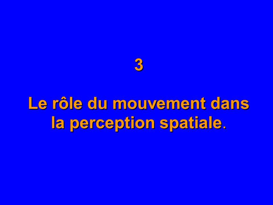 3 Le rôle du mouvement dans la perception spatiale.