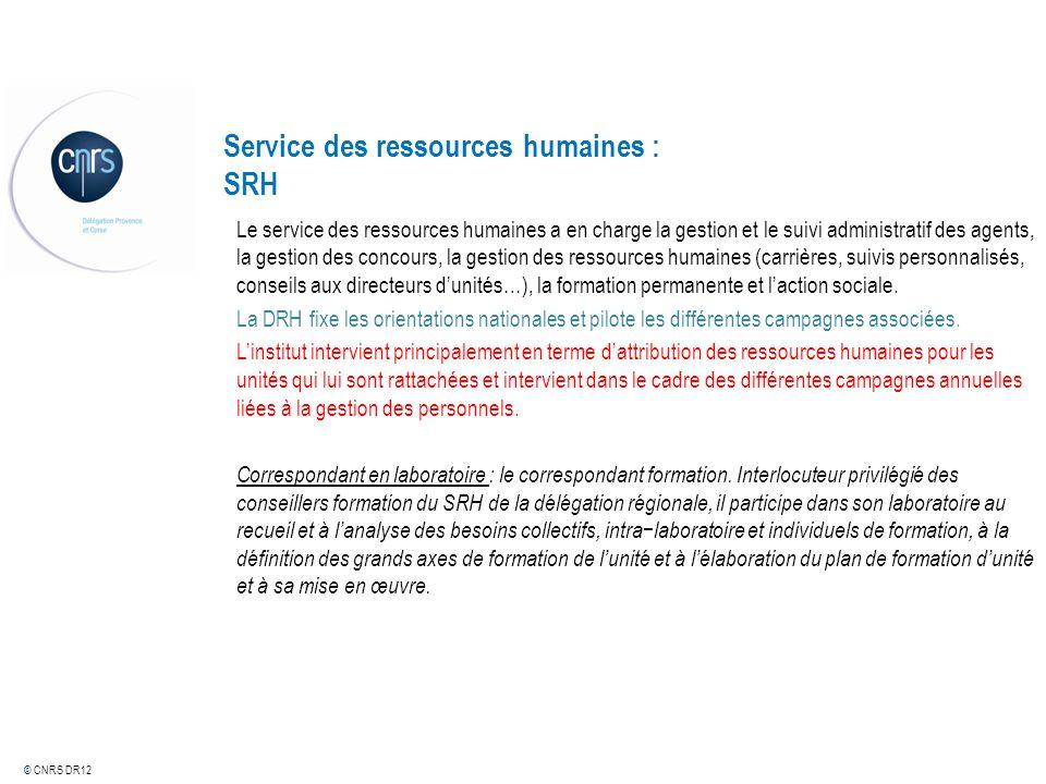 Service des ressources humaines : SRH