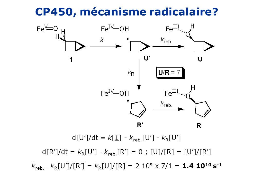 CP450, mécanisme radicalaire