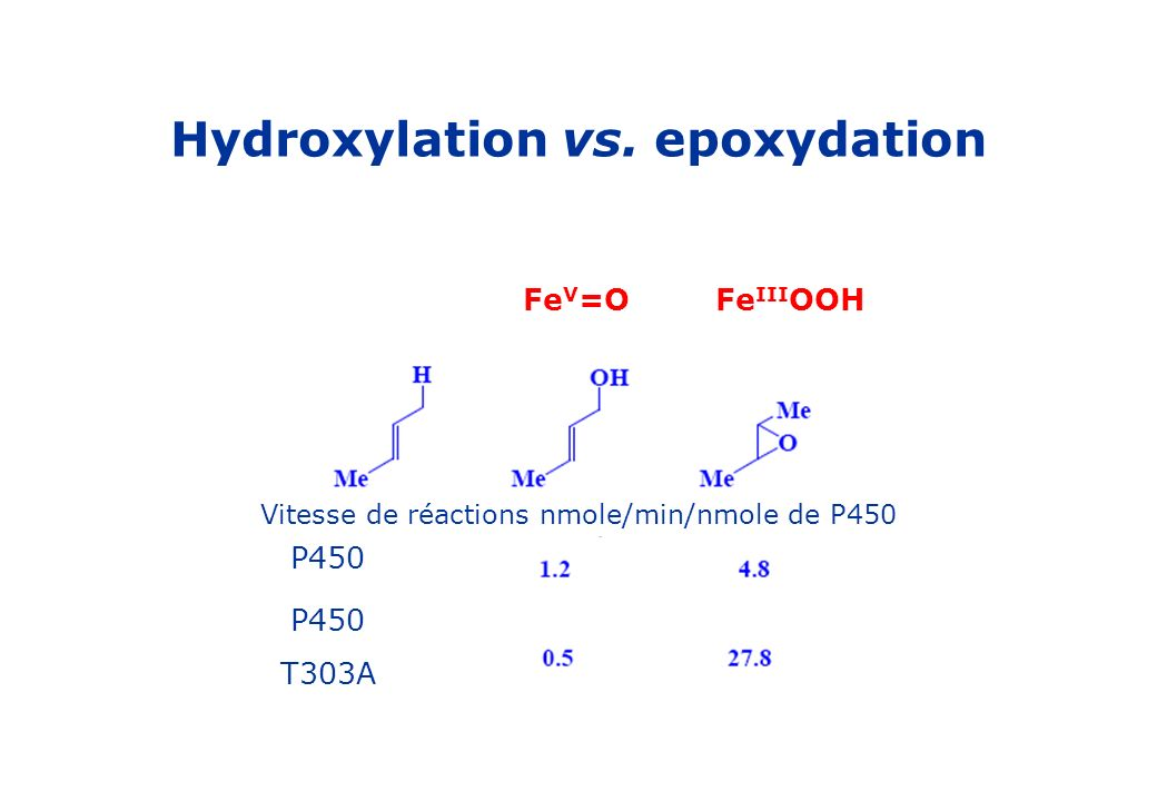 Hydroxylation vs. epoxydation