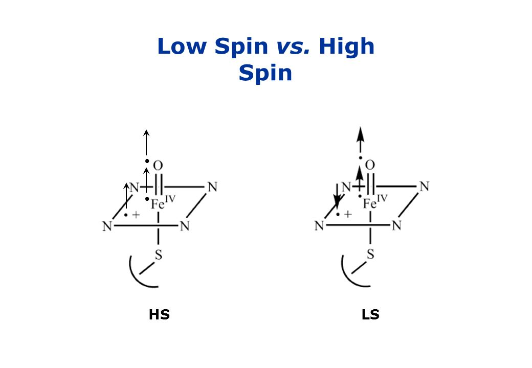 Low Spin vs. High Spin • HS LS