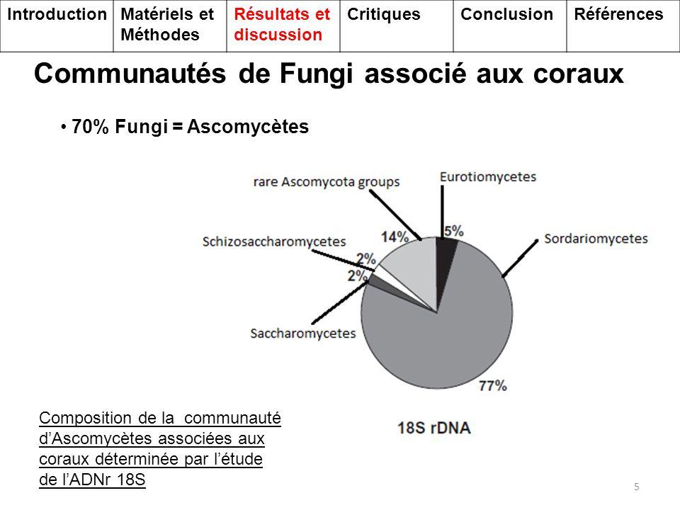Communautés de Fungi associé aux coraux